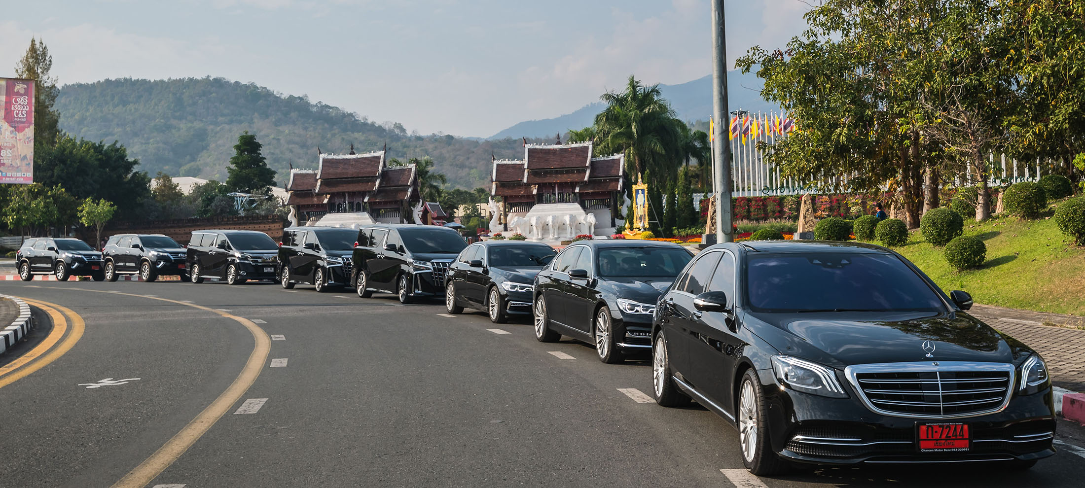 brand new car for rental by chiang mai alphard_chinese